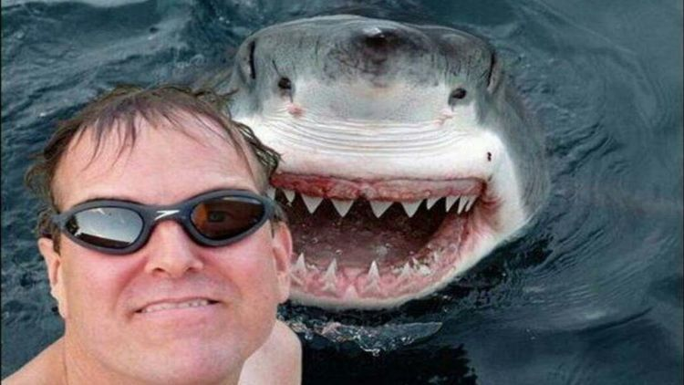 Selfie di depan hiu