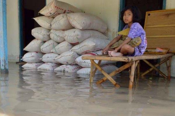 Dek, gabahnya kerendem banjir tuh