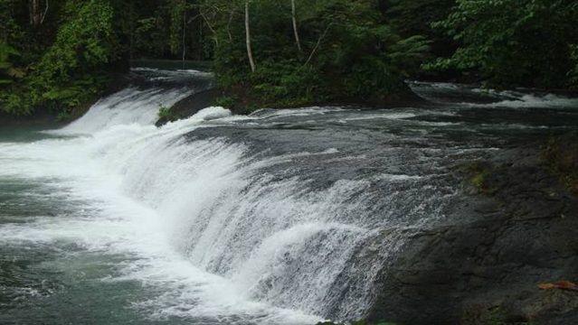 Air terjun dan hutan peawan