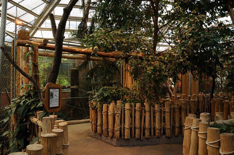 Rumah unik berbentuk hutan