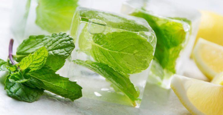 mint-ice-cubes