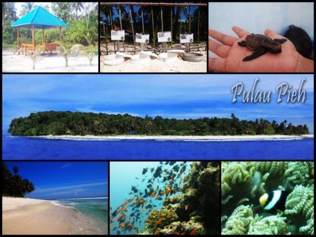 Pulau konservasi penyu