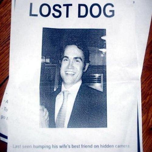 Anjing hilang