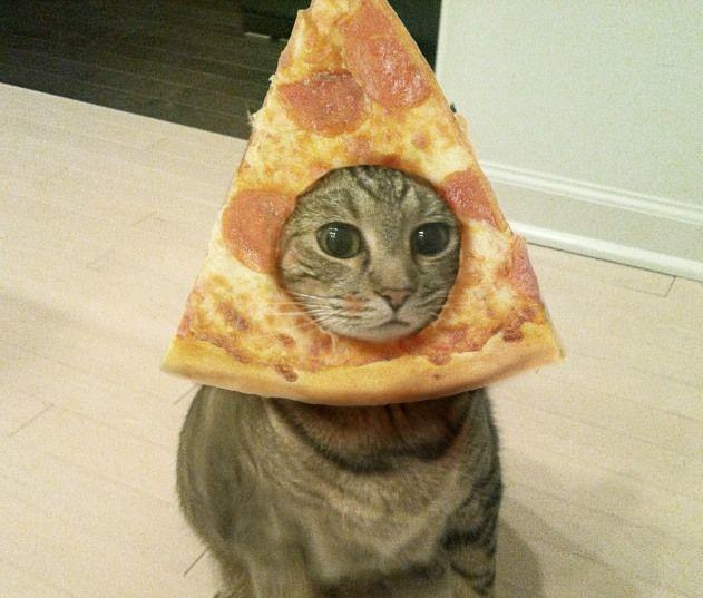 Lama. Aku taruh pizza di muka saja