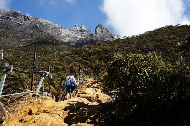 Summit Trails Mount Kinabalu