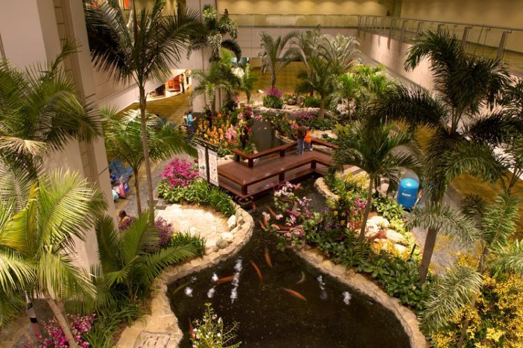 changi-airport-orchid-garden