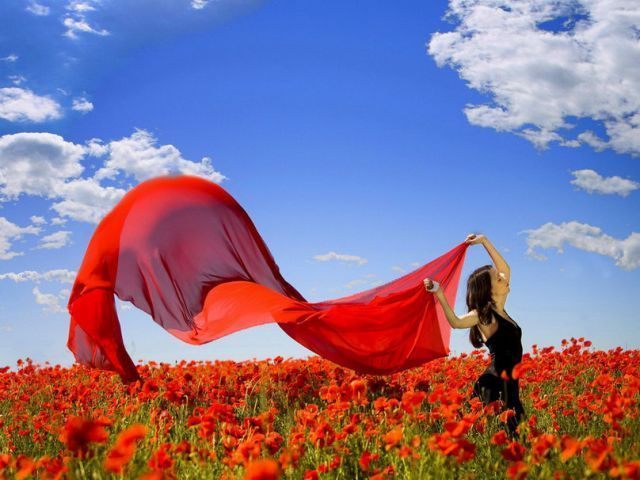 rayakan kebebasan hatimu!