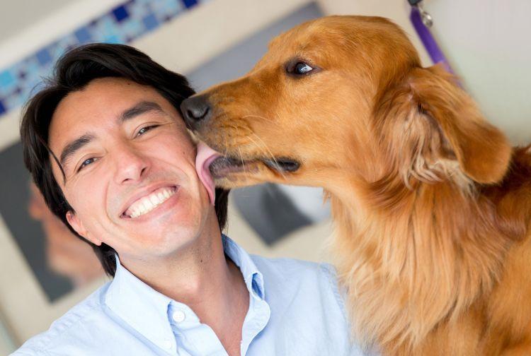 Anjing mengajarkan kita bahasa cinta