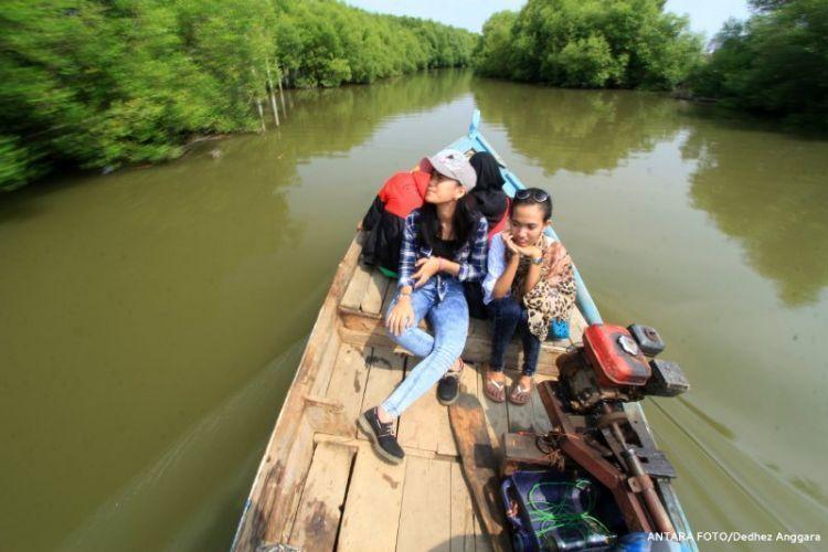 Mangrove Karangsong