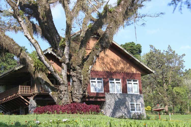 Rumah bekas peninggalan Belanda yang sangat unik di Jampit (kredit: Shofiudin)