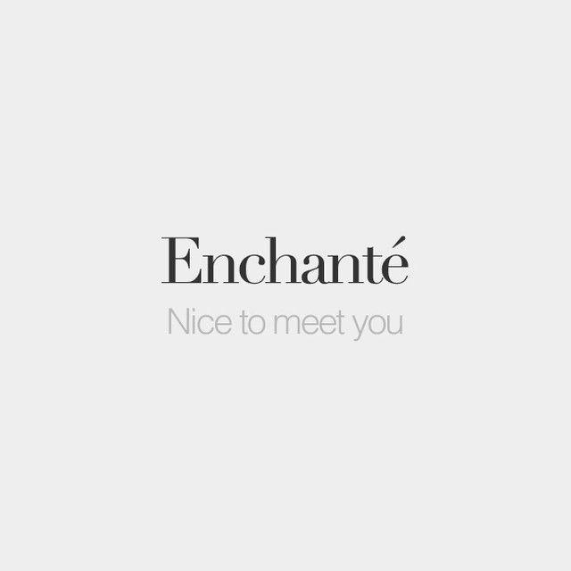 Enchanté(e) (read: Ongsyongte)