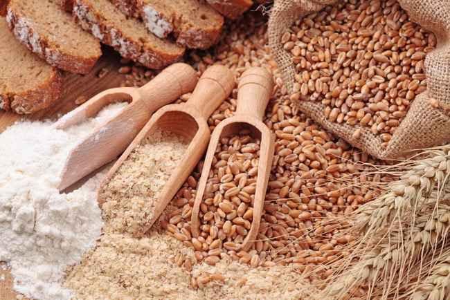 gandum dan tepungnya