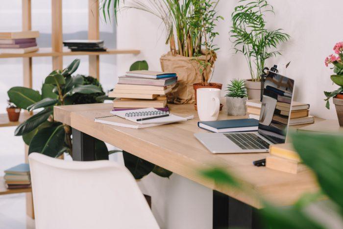 Ruang kerja dengan tanaman hijau