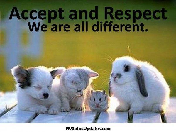 saling menghargai ditengah perbedaan yuk..