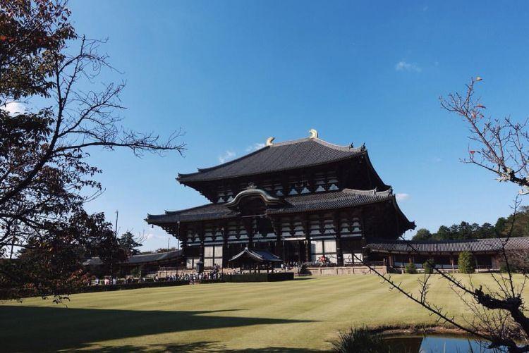 Nara castle yang legendaris