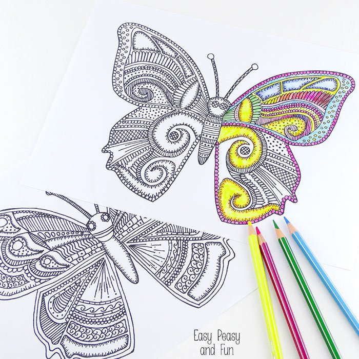 Kupu-kupu jangan pergi