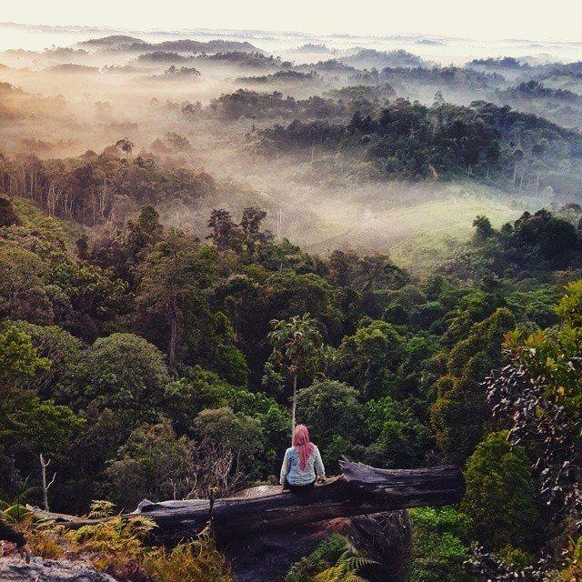 Batu Dinding Hill, Kutai Kartanegara, East Kalimantan