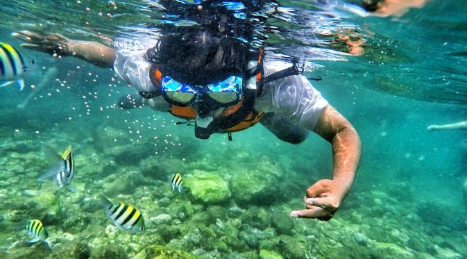 Snorkeling bersama ikan-ikan lucu~