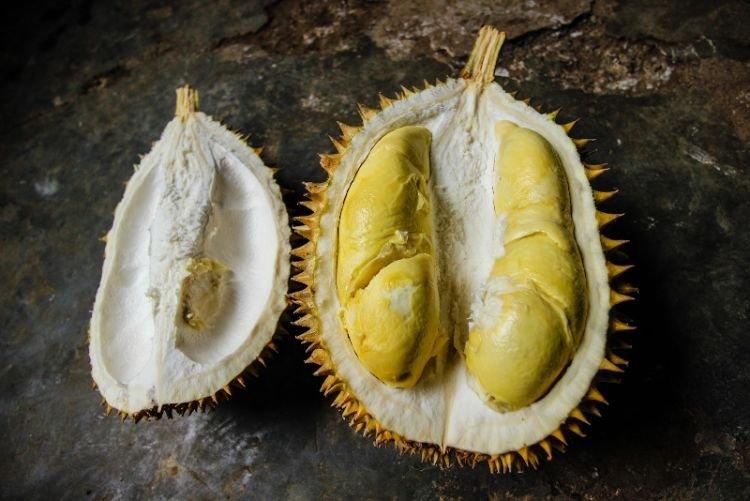 Durian Menoreh