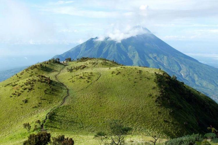 Menikmati Savana Gunung Merbabu