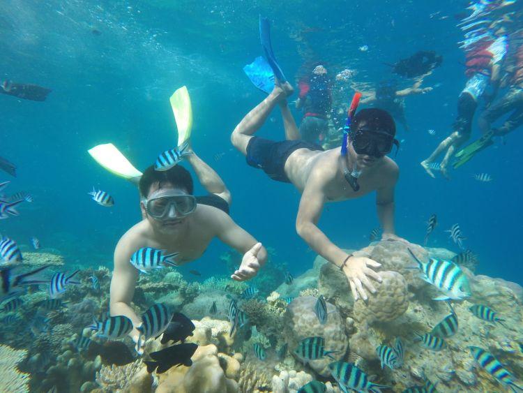Snorkeling di Pulau Menjangan Kecil, Karimunjawa. Wani?