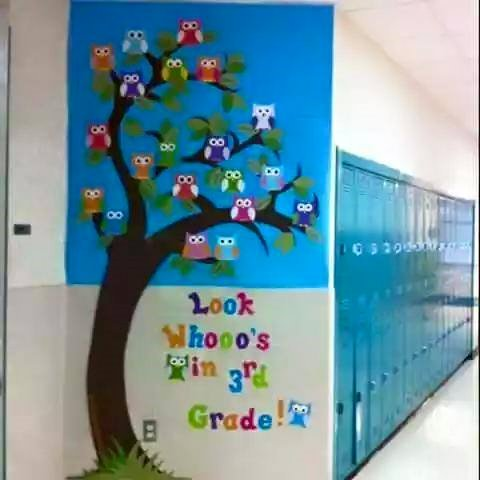 8 Pohon Pengisi Kekosongan Koridor