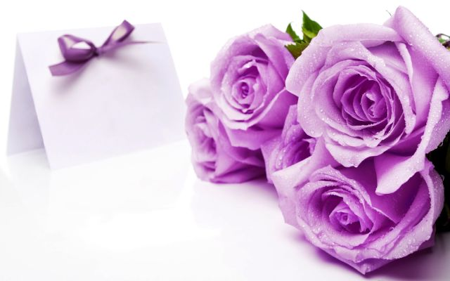 Bunga Simbol Cinta Pandangan Pertama