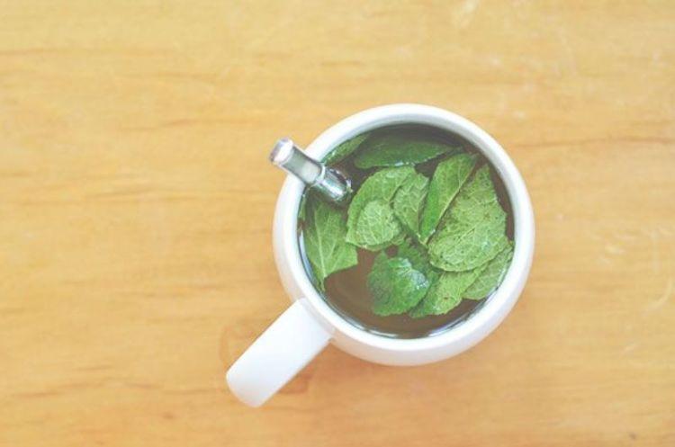teh hijau + daun mint