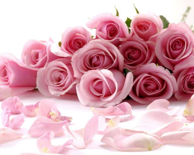 Bunga Favorit Kaum Hawa