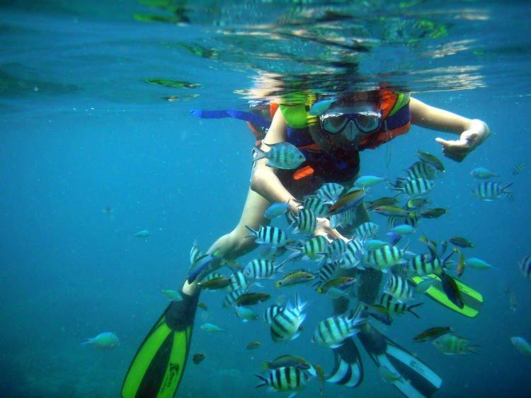Snorkeling itu asik!