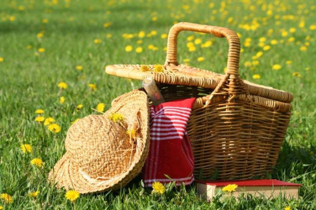 piknik dulu gih
