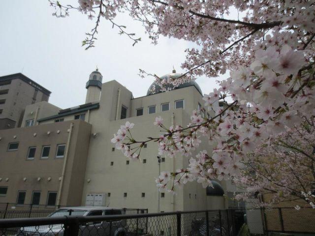 Bisa Jadi Masjid adalah Tempat Terbaik untuk Mencari