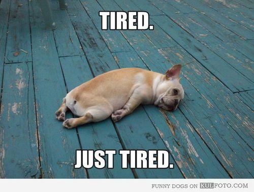 Pokoknya lelah...