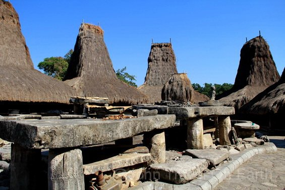 Rumah khas suku Loli.