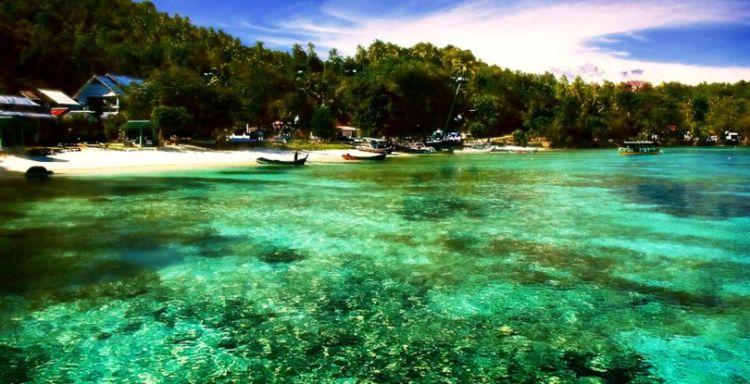 Area untuk snorkeling nih. Ajib!