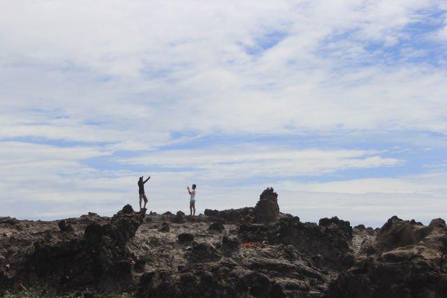 Foto ala-ala di gugusan karang