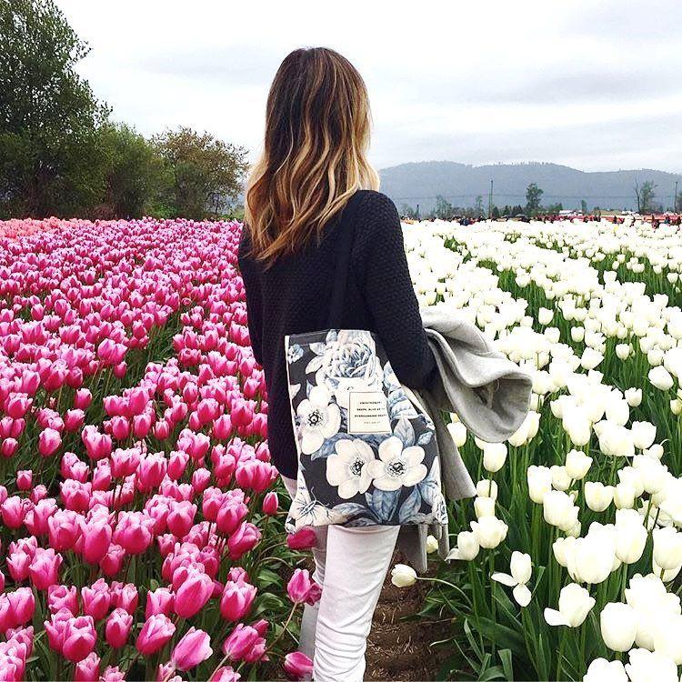 Mau keliling kebun tulip, tetao menawan! @obviousstate