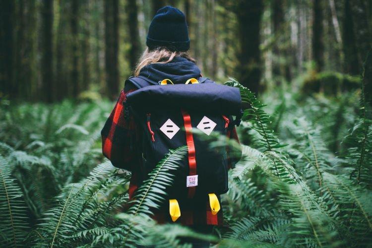 Mendaki, menembus hutan belukar
