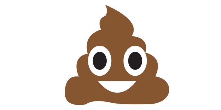 What-Your-Poop-Tells-You-About-Your-Diet-and-Health-in-General