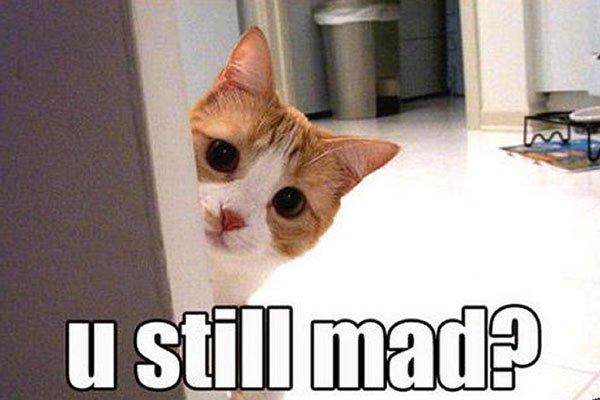 you still mad?