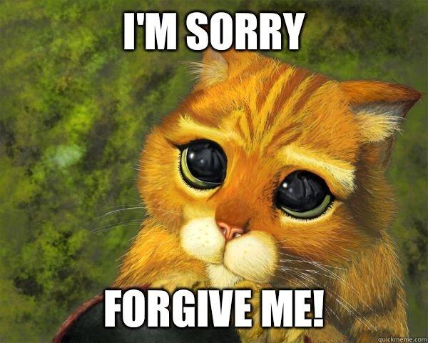 Forgive Me, Please..