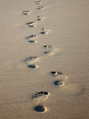 The times when you have seen only one set of footprints, is when I carried you