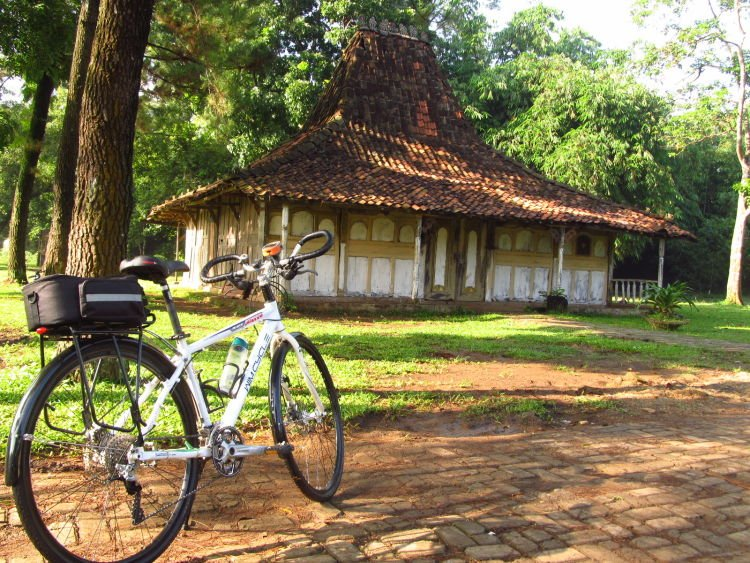 Gowes!