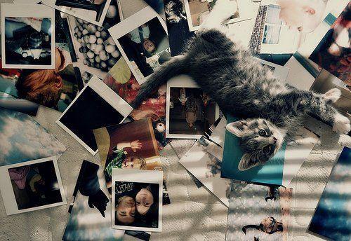 foto-foto tentang kamu dan dia