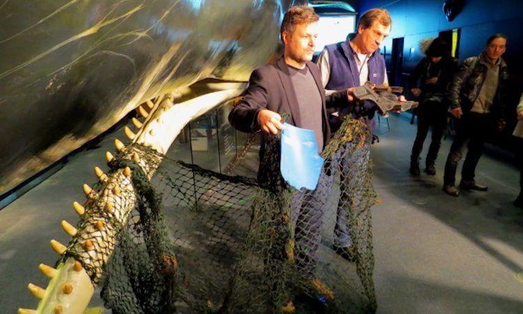 Jaring ikan ini ditemukan dalam perut sang paus sperma. Sungguh mengerikan!
