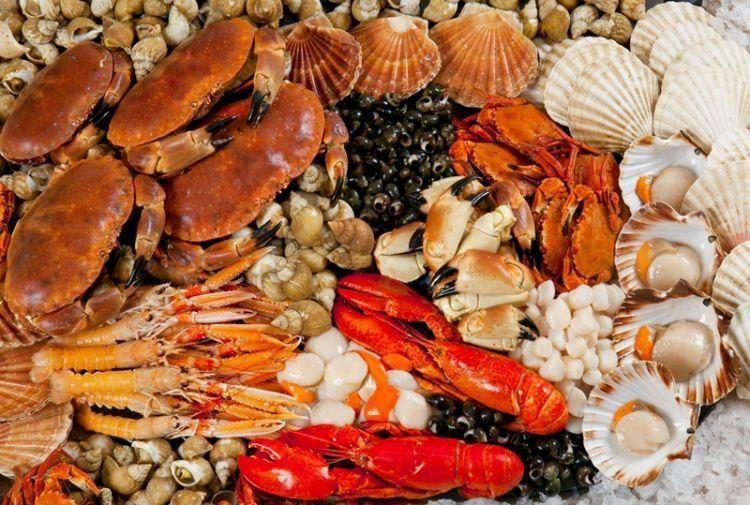 makanan laut punya kandungan mineral tinggi