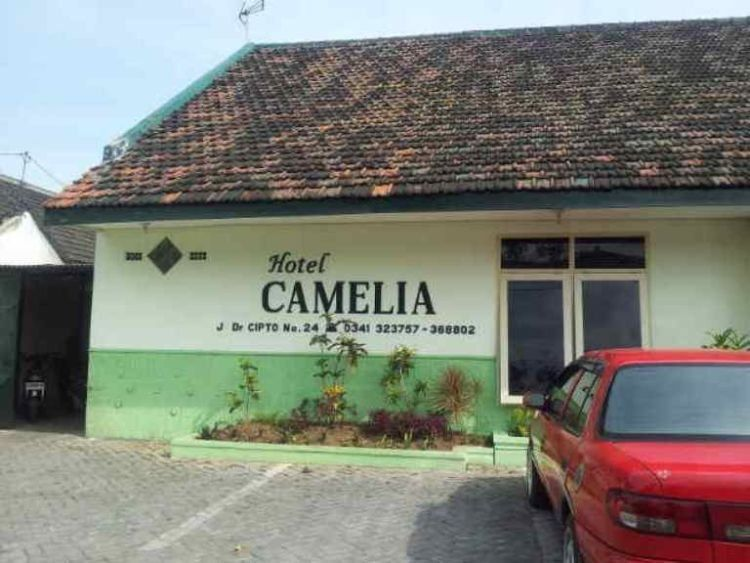 Inilah Hotel Camelia favorit para backpacker