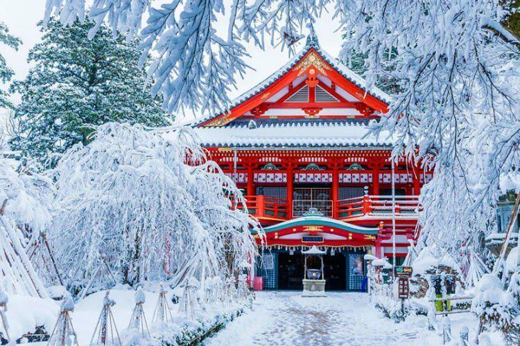 Warna merah menyala di tengah salju
