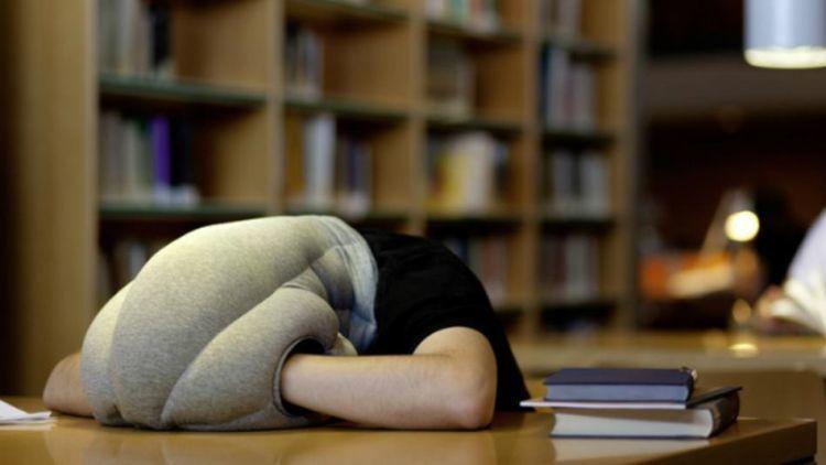 Tidur siang dulu deh...