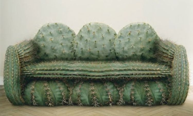 sofa kaktus. tajem nggak yha?